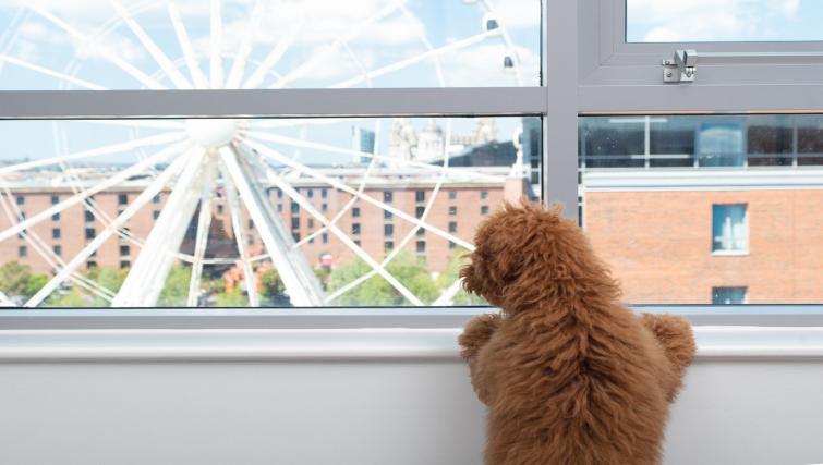 Views at Staybridge Suites Liverpool