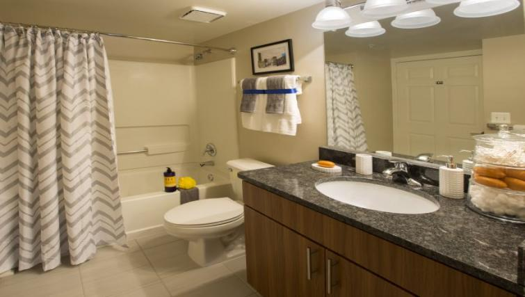 Bathroom at Meridian at Courthouse Commons Apartments