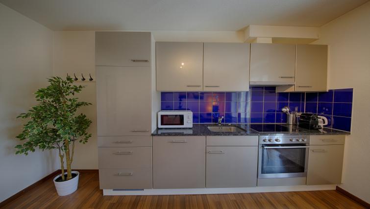 Kitchen at the Oerlikon Apartments