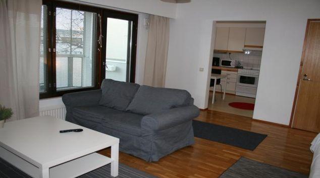 Living room at the Vapaudenkatu Apartment