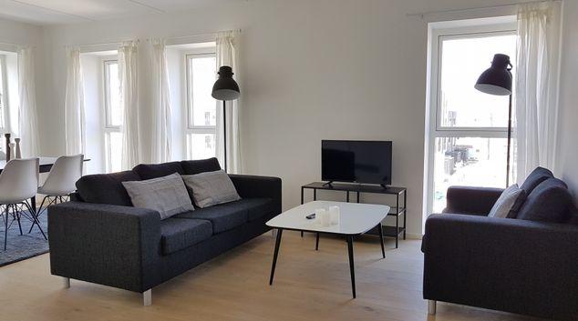 Living room at Robert Jacobsens Apartments