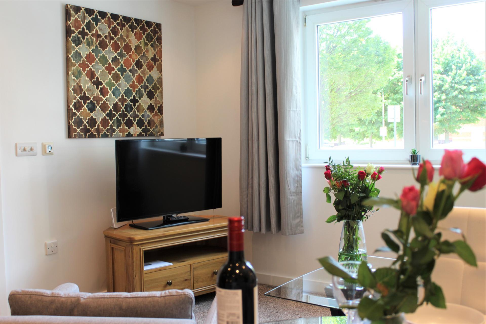 TV at Gunwharf Quays Apartments, Gunwharf Quays, Portsmouth