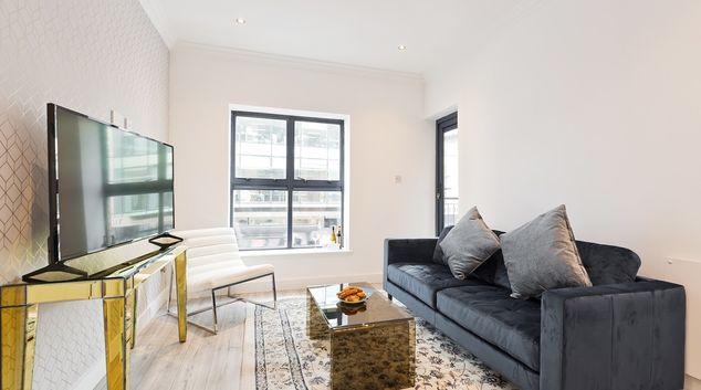 Living area at Trinity on Liffey Apartment