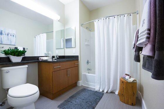 Bathroom at Bridgepointe Apartments San Mateo