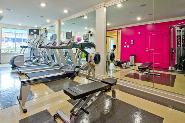 Gym at Exchange at Middle Town Apartment