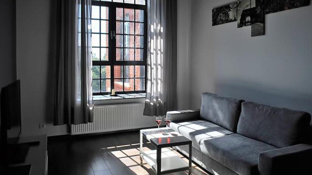 Sofa at Tymienieckiego Apartments, Centre, Lodz