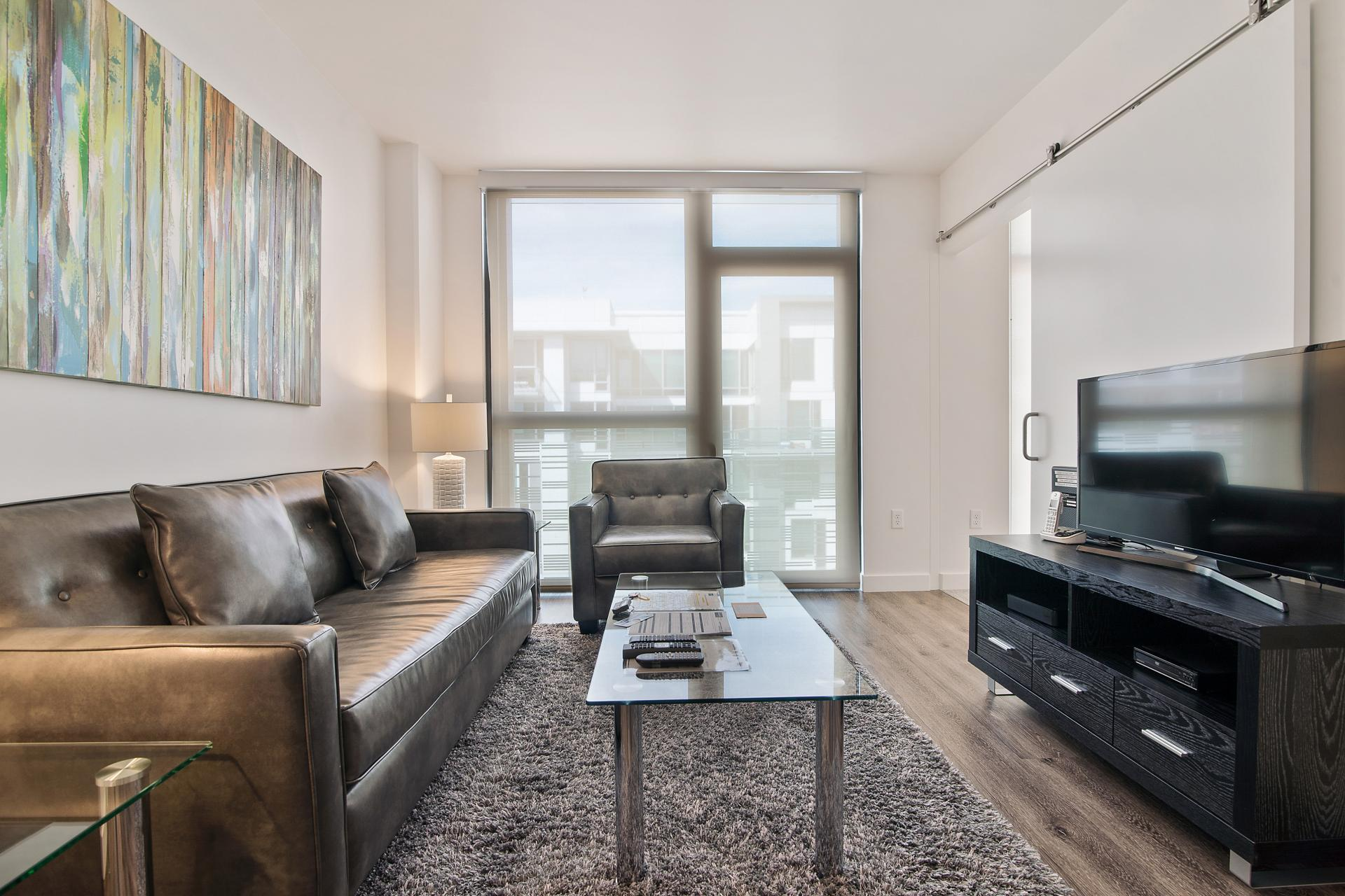 Sofa at 923 Folsom Street Apartments, Soma, San Francisco