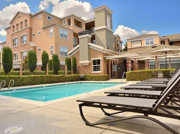 Pool at Avalon Walnut Creek Apartment