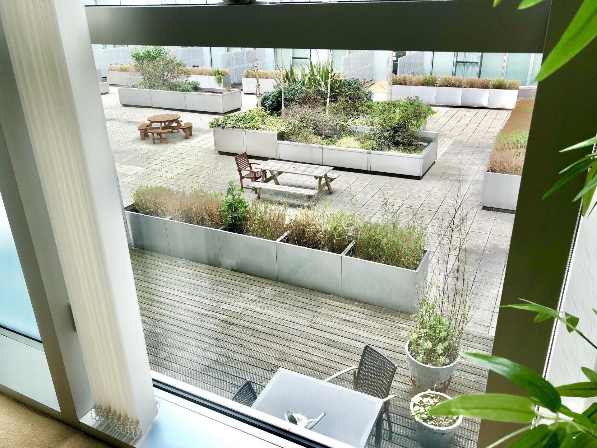 Garden at The Hub Serviced Apartments