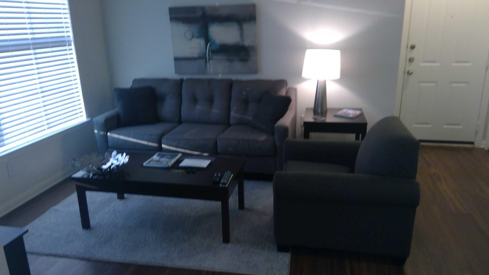 Living Room at Riata at Rock Creek Apartments