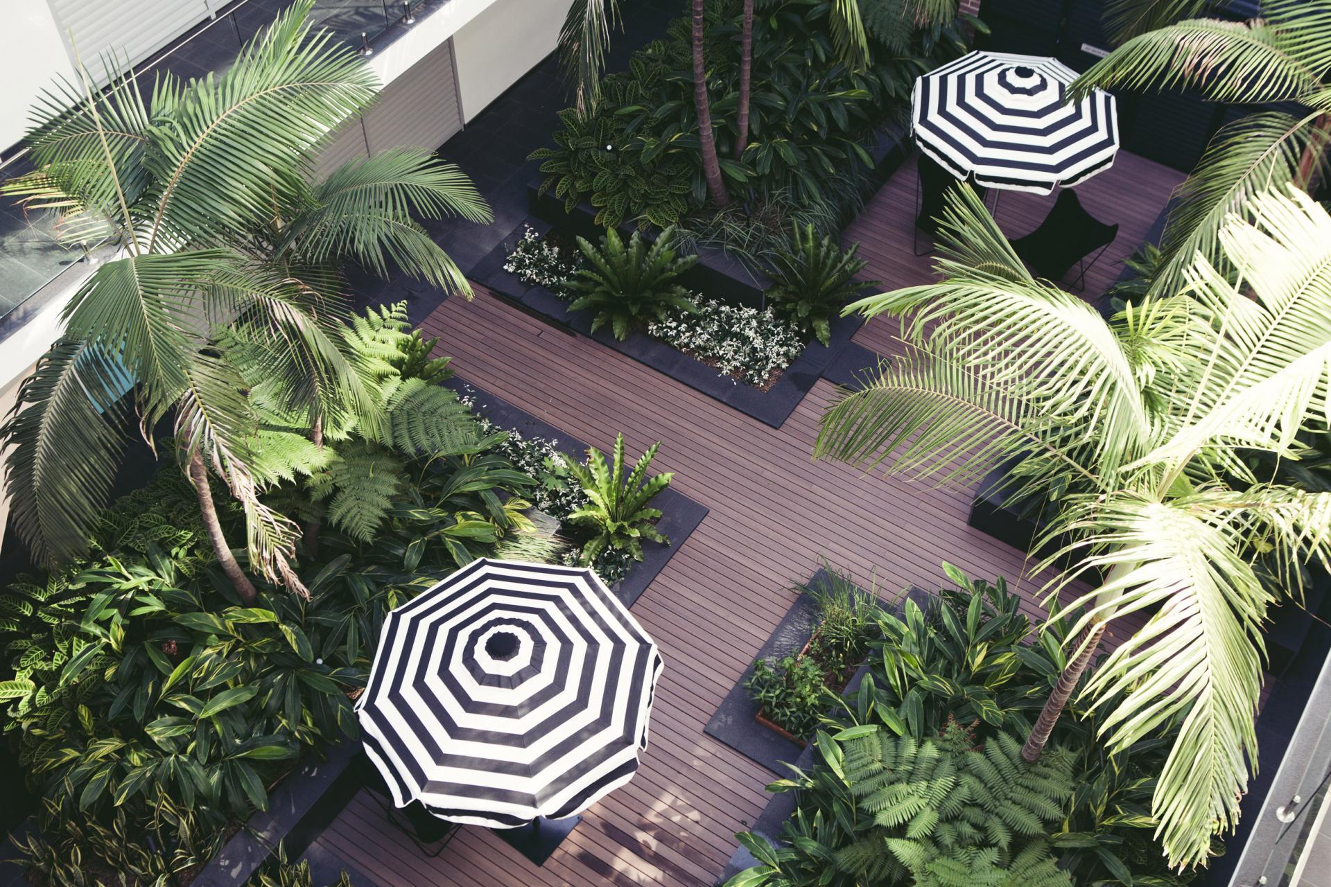 Communal gardens at Veriu Camperdown Apartments