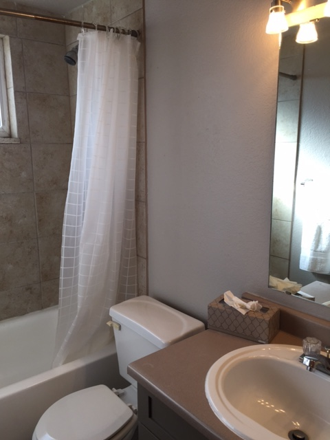 Bathroom at Grant Street Apartment