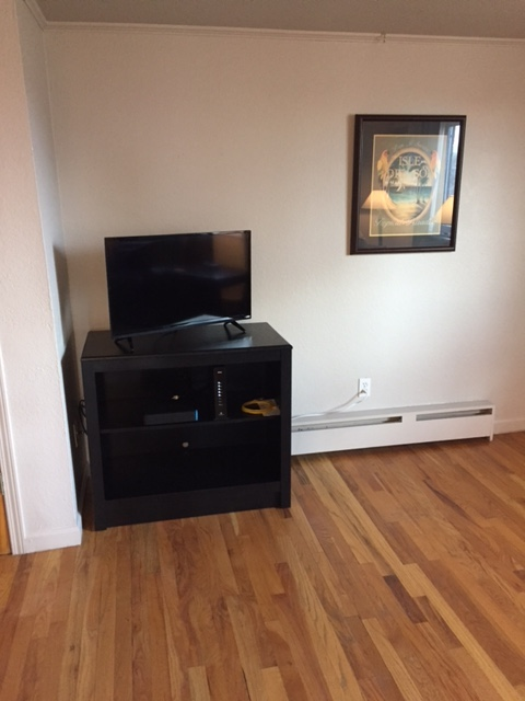 TV at Grant Street Apartment