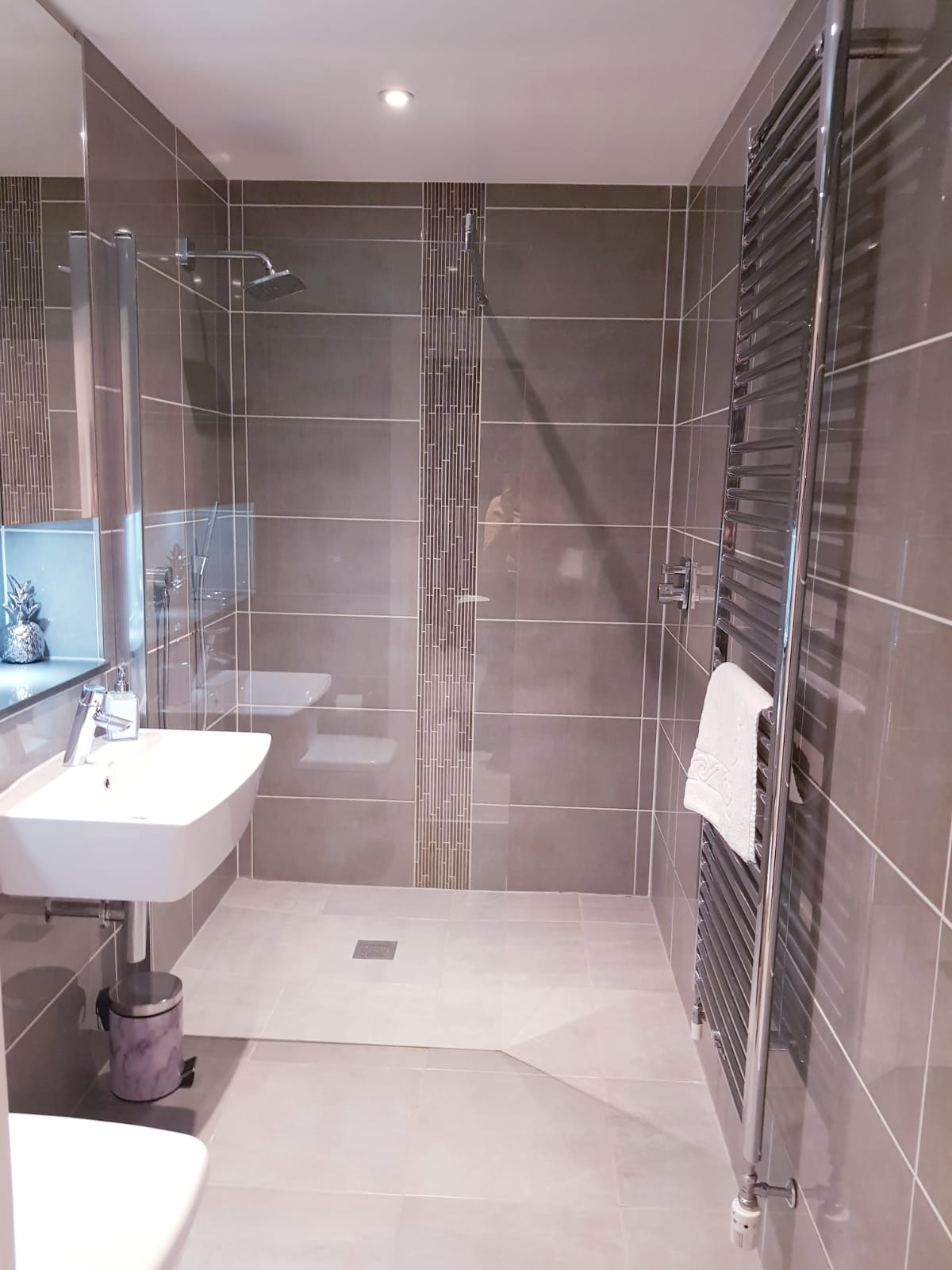 Shower at Noble House Apartment, Chiswick, London