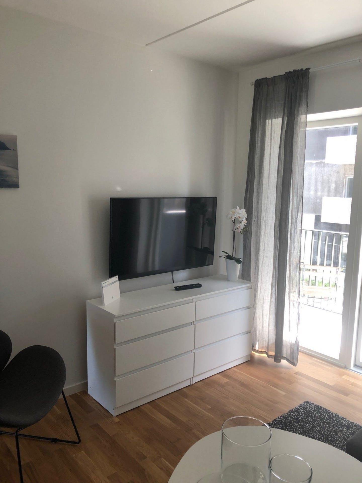 TV at Møllehatten 11 Apartment, Risskov, Aarhus