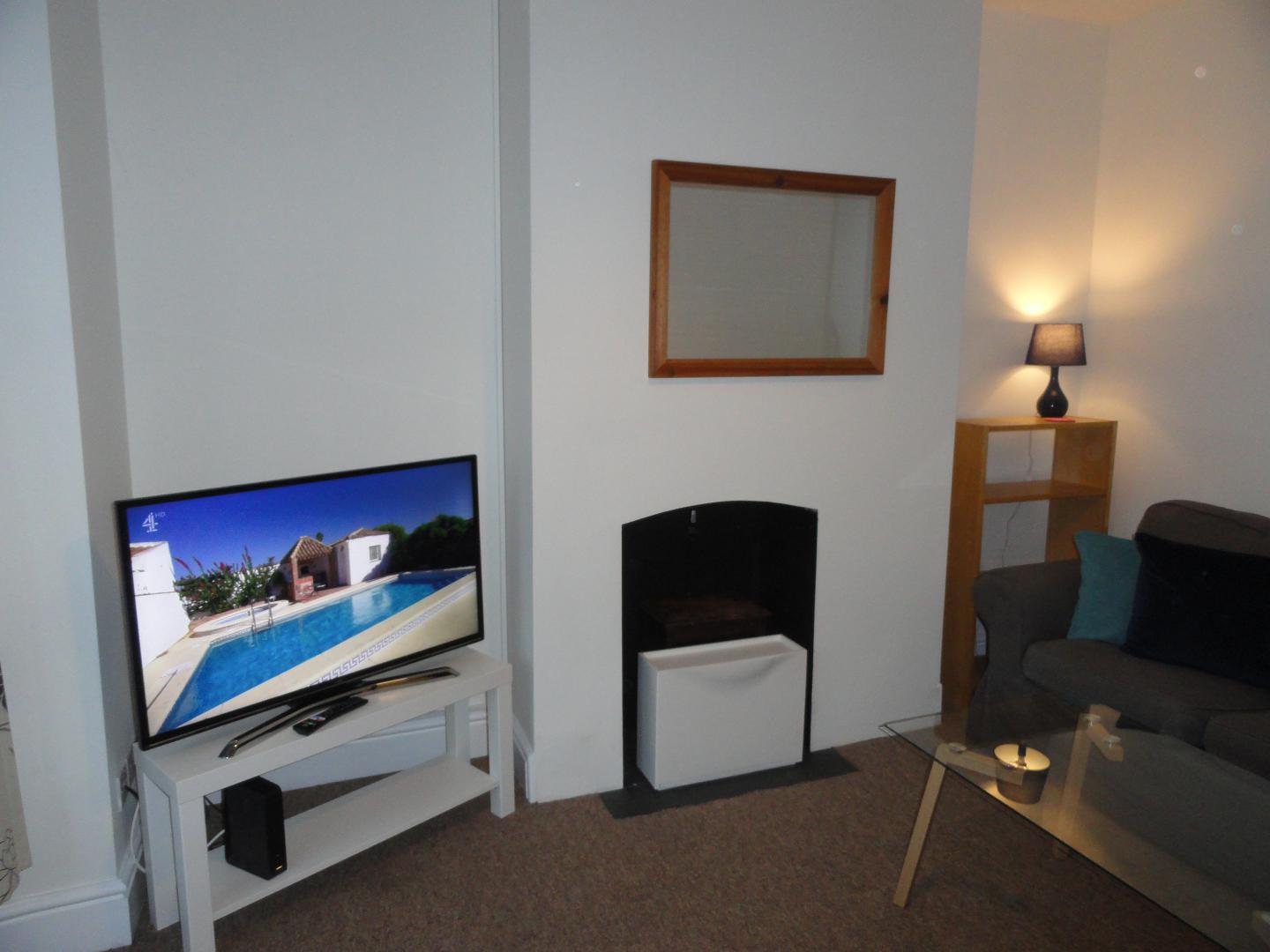 TV at Luckwell Apartments, Bedminster, Bristol
