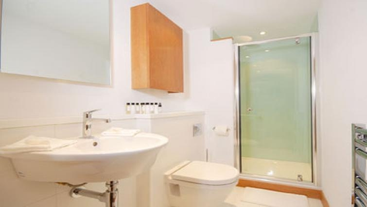 Sophisticated bathroom in Turnmill Street Apartment