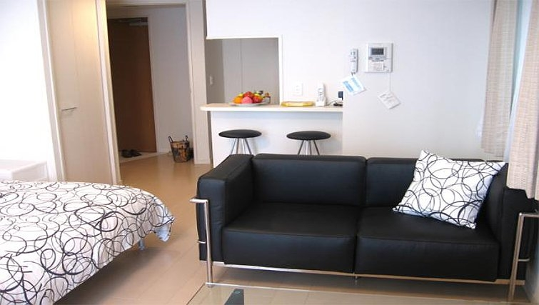 Beautiful living area at Central Crib Roppongi II Apartments