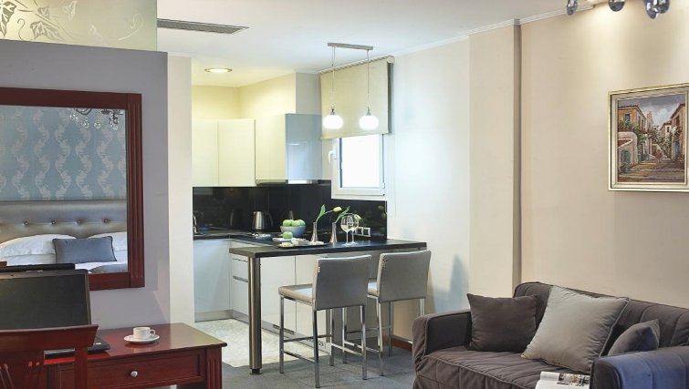 Contemporary kitchen in AVA Hotel Apartments and Suites