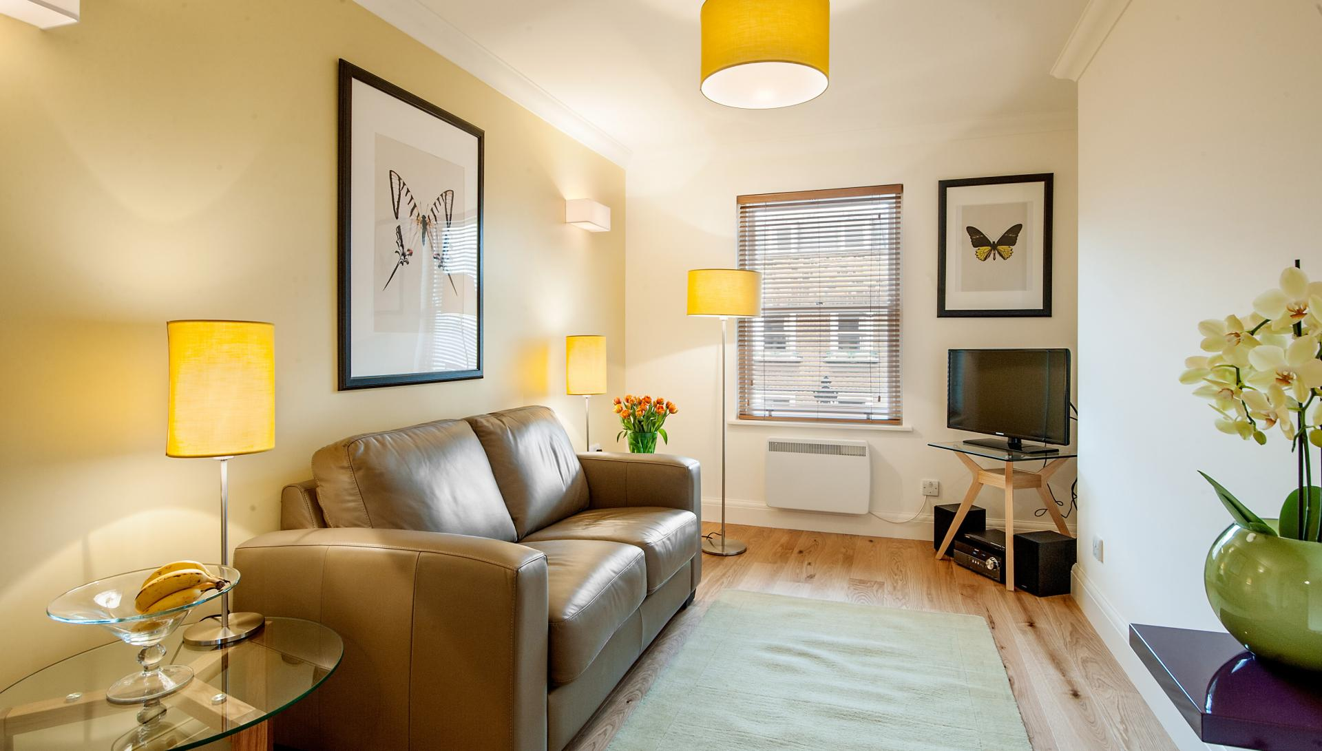 TV at Chiltern Street Apartments