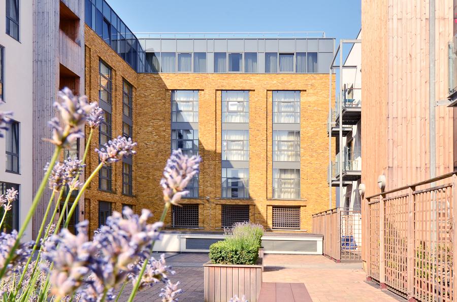Flowers at So Battersea Apartments, Battersea, London