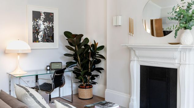 Plant at 56 Welbeck Street Apartments, Marylebone, London